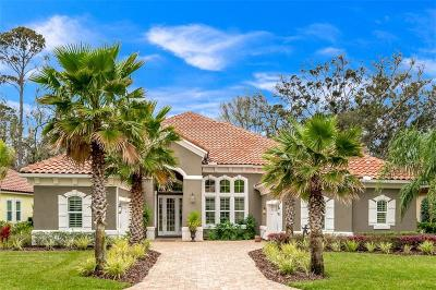 FERNANDINA Single Family Home For Sale: 95031 Whistling Duck Circle