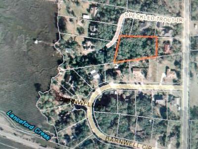 FERNANDINA Residential Lots & Land For Sale: 95079 Barnwell Road
