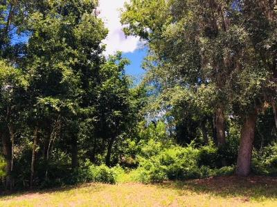 Residential Lots & Land For Sale: 97032 Huntington Court