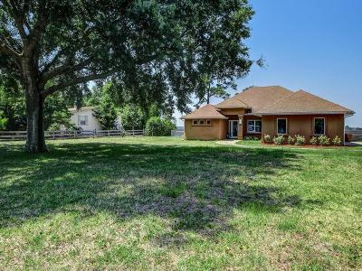 Yulee Single Family Home For Sale: 85117 Harts Road