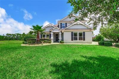 Fernandina Beach Single Family Home For Sale: 85222 Majestic Walk Boulevard