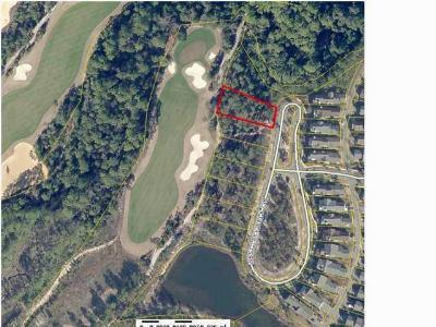 Residential Lots & Land For Sale: 1230 W Lakewalk Circle