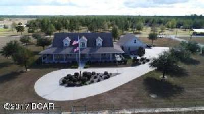 Calhoun County Single Family Home For Sale: 941 W Sr 20