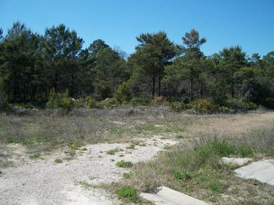 Panama City Beach Commercial Lots & Land For Sale: 1000 Thomas Drive