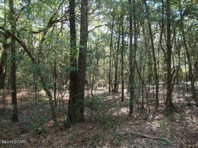 Holmes County Residential Lots & Land For Sale: Olive Lane