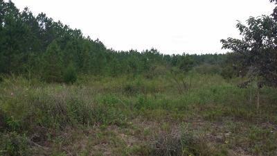 Residential Lots & Land For Sale: Stone Bridge Trail