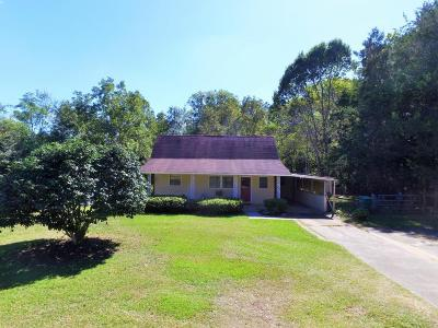 Marianna Single Family Home For Sale: 5377 Blue Springs Road