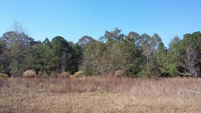 Holmes County Residential Lots & Land For Sale: 1350 Beaver Dam Road