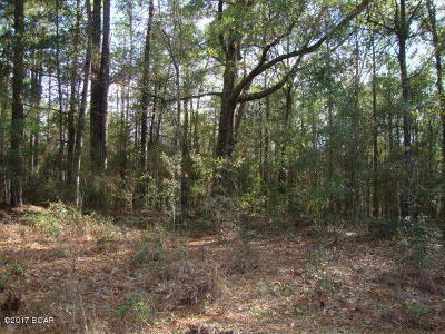 Holmes County Residential Lots & Land For Sale: Lot 13 Muir Lane