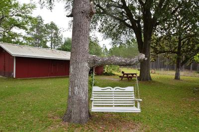 Jackson County Single Family Home For Sale: 650 Treeline Road