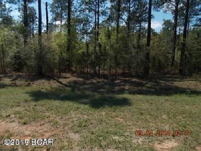 Holmes County Residential Lots & Land For Sale: Lot 49 Beach Drive