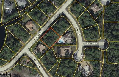 Residential Lots & Land For Sale: 303 Trieste Blvd