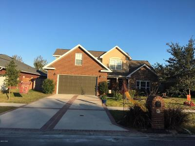 Single Family Home For Sale: 313 Willow Way