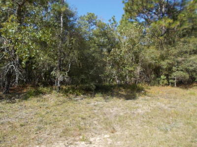 Washington County Residential Lots & Land For Sale: Pintado Court