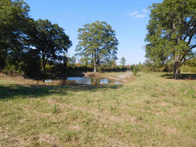 Holmes County Residential Lots & Land For Sale: 1662 Brackin Road