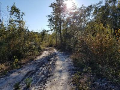 Grand Ridge FL Residential Lots & Land For Sale: $114,000