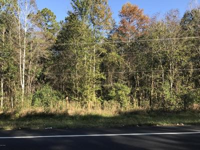 Residential Lots & Land For Sale: Hwy 73