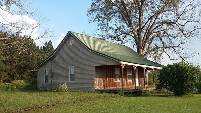 Holmes County Single Family Home For Sale: 1377 Hwy 179