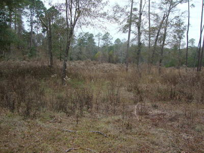 Holmes County Residential Lots & Land For Sale: Brook Drive