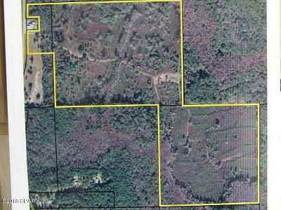 Holmes County Residential Lots & Land For Sale: 2587 S 181 Highway