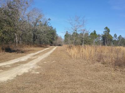 Marianna Residential Lots & Land For Sale: Xxxx Knotty Pine Ln