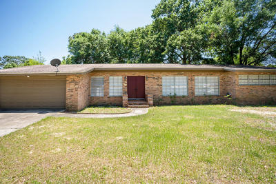 Bay County Single Family Home For Sale: 5012 Park Street