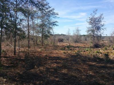 Marianna Residential Lots & Land For Sale: Xxxx Gotcha Lane
