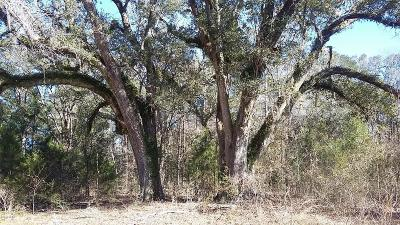 Holmes County Residential Lots & Land For Sale: 4 Acres S Hwy 173