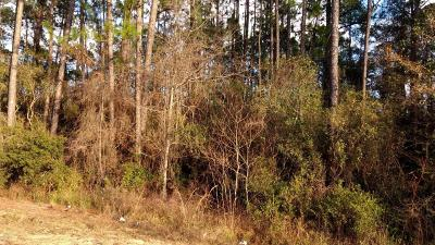 Holmes County Residential Lots & Land For Sale: Sand Path Road