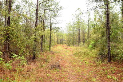 Holmes County Residential Lots & Land For Sale: Xxx Ten Mile Road
