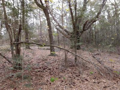 Washington County Residential Lots & Land For Sale: Simmons Road