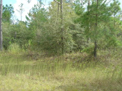Marianna Residential Lots & Land For Sale: Lilac