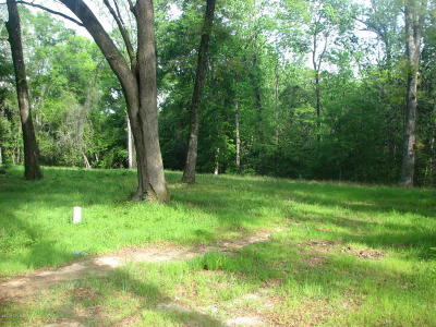 Marianna Residential Lots & Land For Sale: Jackson Bluff Road