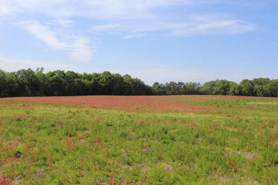 Washington County Residential Lots & Land For Sale: Creek Road