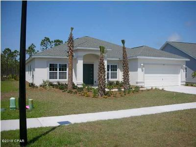 Single Family Home For Sale: 237 Middleburg Drive