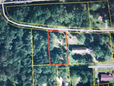 Marianna Residential Lots & Land For Sale: Clay St.