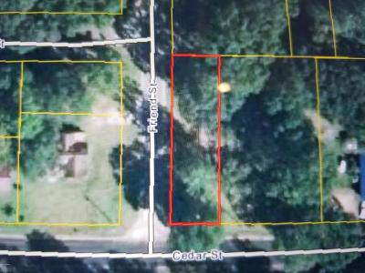 Marianna Residential Lots & Land For Sale: Friend