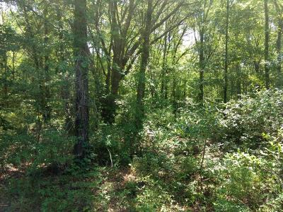 Holmes County Residential Lots & Land For Sale: Suuirrel Alley
