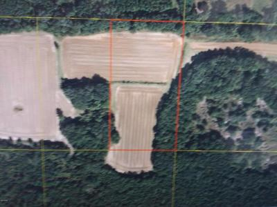 Cottondale FL Residential Lots & Land For Sale: $16,000