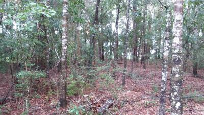 Holmes County Residential Lots & Land For Sale: Marian Drive #LOT 10