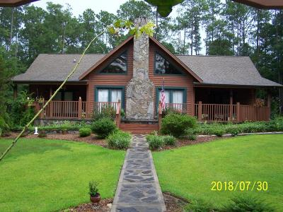Jackson County Single Family Home For Sale: 1039 View Drive