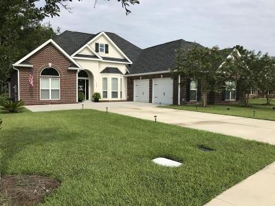 Single Family Home For Sale: 108 Lakeview Terrace