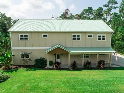 Panama City Single Family Home For Sale: 817 Vista Del Sol Lane