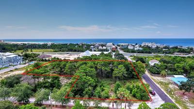 Residential Lots & Land For Sale: 60 N Walton Lakeshore Drive