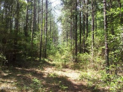 Holmes County Residential Lots & Land For Sale: Beach Dr.
