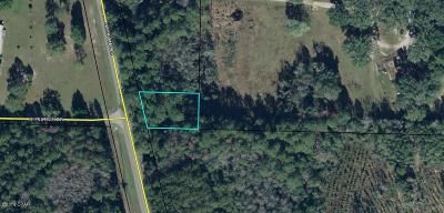 Washington County Residential Lots & Land For Sale: Pate Pond Road