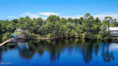 Panama City Beach, Rosemary Beach, Seacrest, Watersound, Miramar Beach, Seagrove Beach Residential Lots & Land For Sale: 22120 Lakeview
