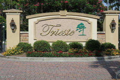 Panama City Beach, Rosemary Beach, Seacrest, Watersound, Miramar Beach, Seagrove Beach Residential Lots & Land For Sale: 204 Trieste Boulevard