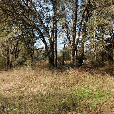 Holmes County Residential Lots & Land For Sale: 2404 Jw Miller Road