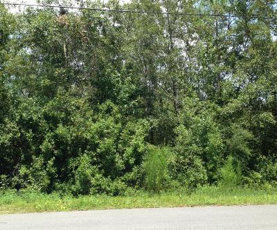 Residential Lots & Land For Sale: 202 Lullwater Drive